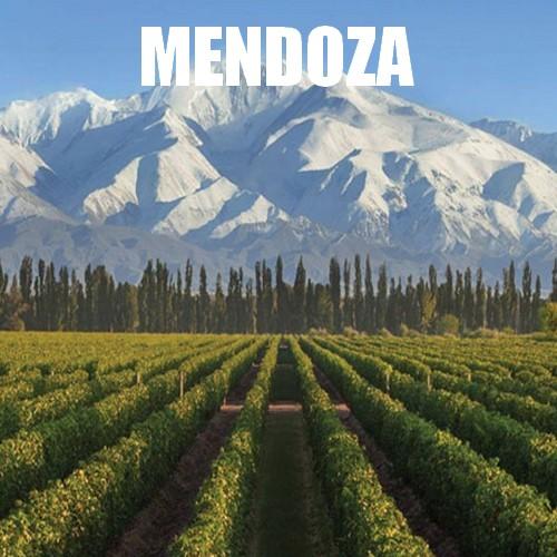 Voyage Mendoza Argentine